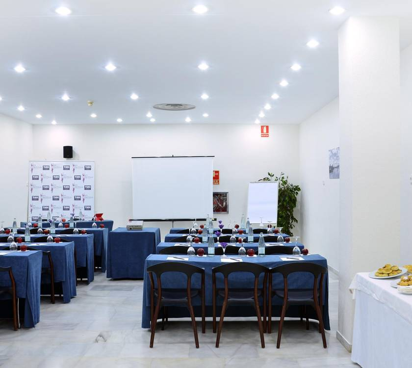 Meeting Room TRH La Motilla2